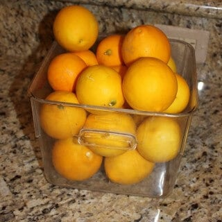 I got all these lemons from a neighbor! We LOVE lemons and I've got lots of plans for them.