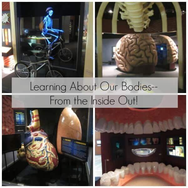 Houston Health Museum Visit