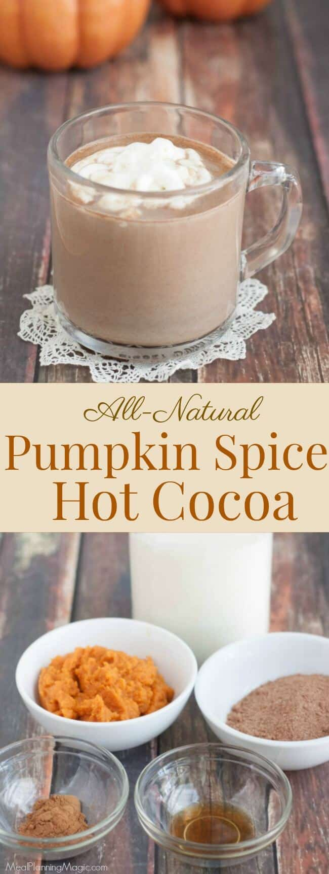 Capture the taste of fall with pumpkin and chocolate in this simple and delicious Pumpkin Spice Hot Cocoa recipe. Makes enough to share--if you're willing to!