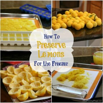 Collage image of different ways to freeze lemons, juice and zest.