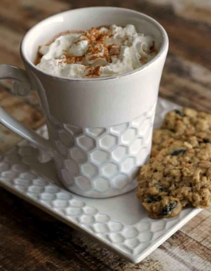 If you love the spices of a warm oatmeal cookie, you'll love it even more with the chocolaty goodness of a cup of hot cocoa in this Warm Oatmeal Cookie Hot Cocoa | Recipe at MealPlanningMagic.com