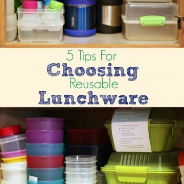 Choosing Earth Friendly Lunchware not only saves you money, it also helps protects our planet. Here, I share 5 tips for choosing lunchware that is right for you.