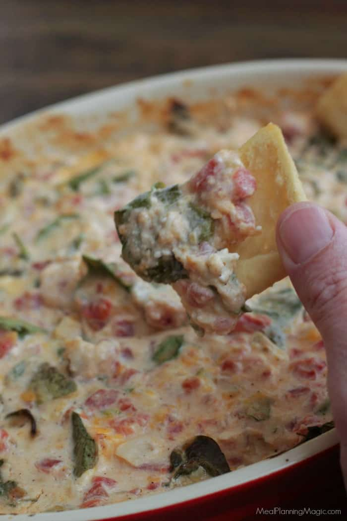 Picture of Mexican Spinach Dip on chip closeup