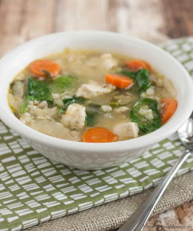 roasted veggie and chicken and rice soup-side view-resized