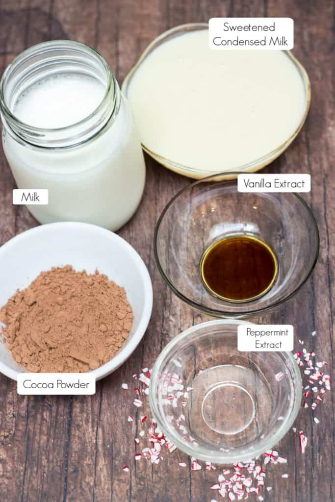 Ingredients in bowls with labels on image to make peppermint mocha creamer.