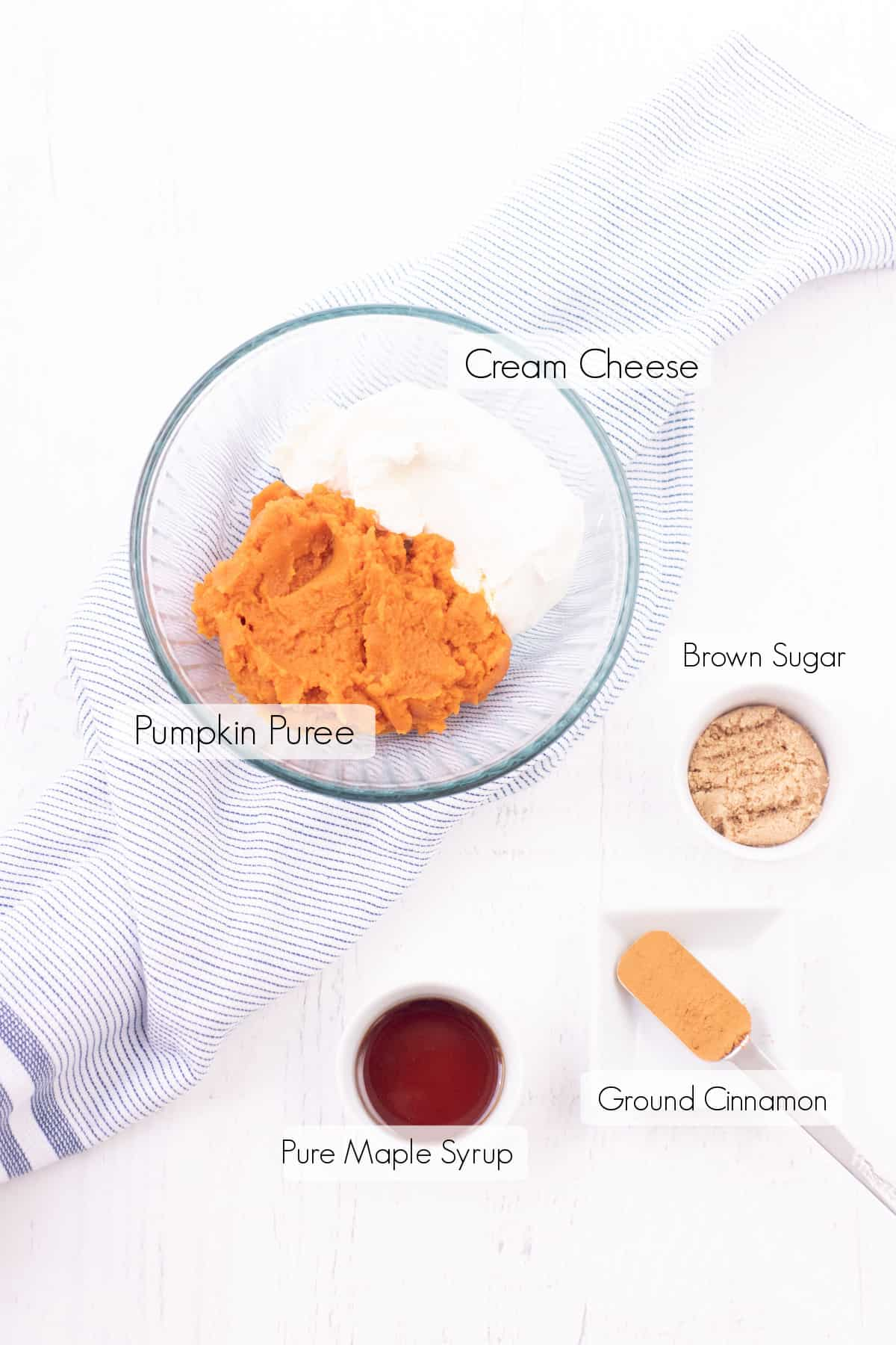Labeled ingredients to make pumpkin cheesecake dip.