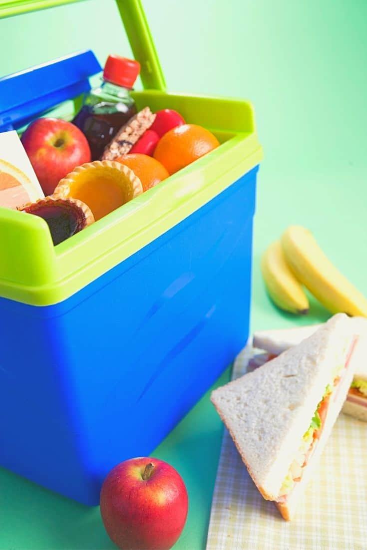 Blue and green food cooler with fruit, snacks and beverages and sandwich, apple and bananas in foreground outside cooler.